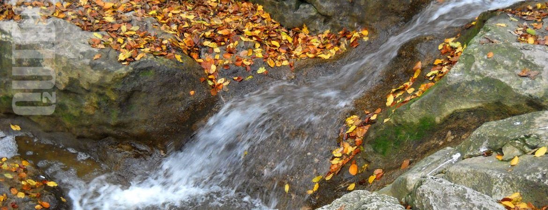 Őszi színek a Római-fürdőn